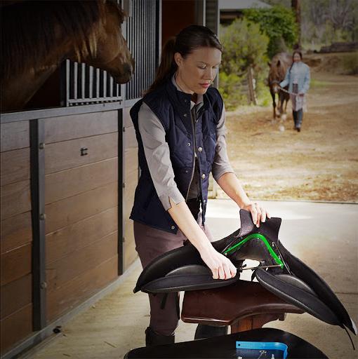 Saddle Fitting - QUEBEC SPECIAL!
